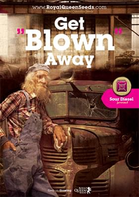 Get blown away - Sour Diesel cannabis poster